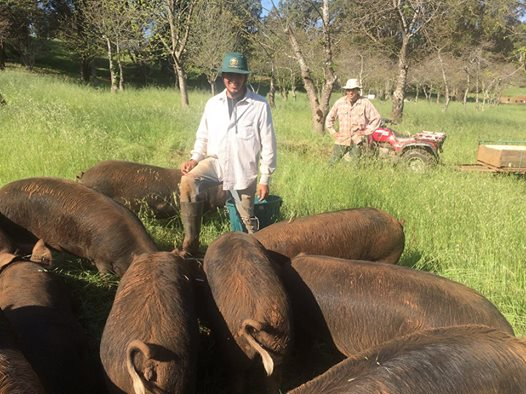 2015-10-Gustavo-and-Melvin-with-our-pigs-1