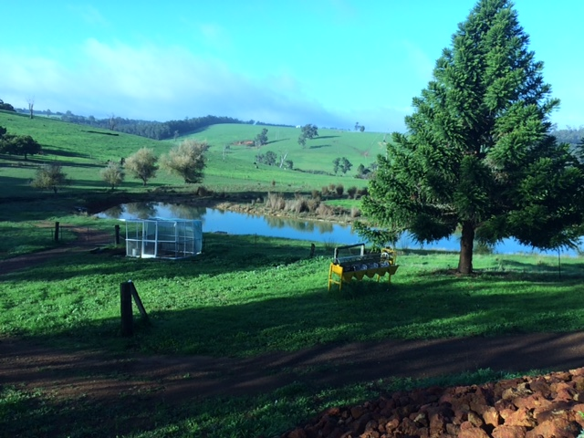 Middle-dam-and-fields-IMG_2390