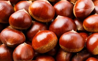 Hot chestnuts at Mt Claremont Farmers Market Saturday 1st June, 15th June, 29th June and 27 July 2019