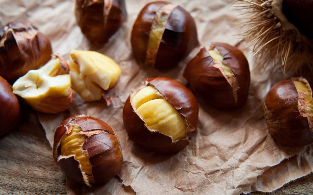 Sweet Chestnuts Facts